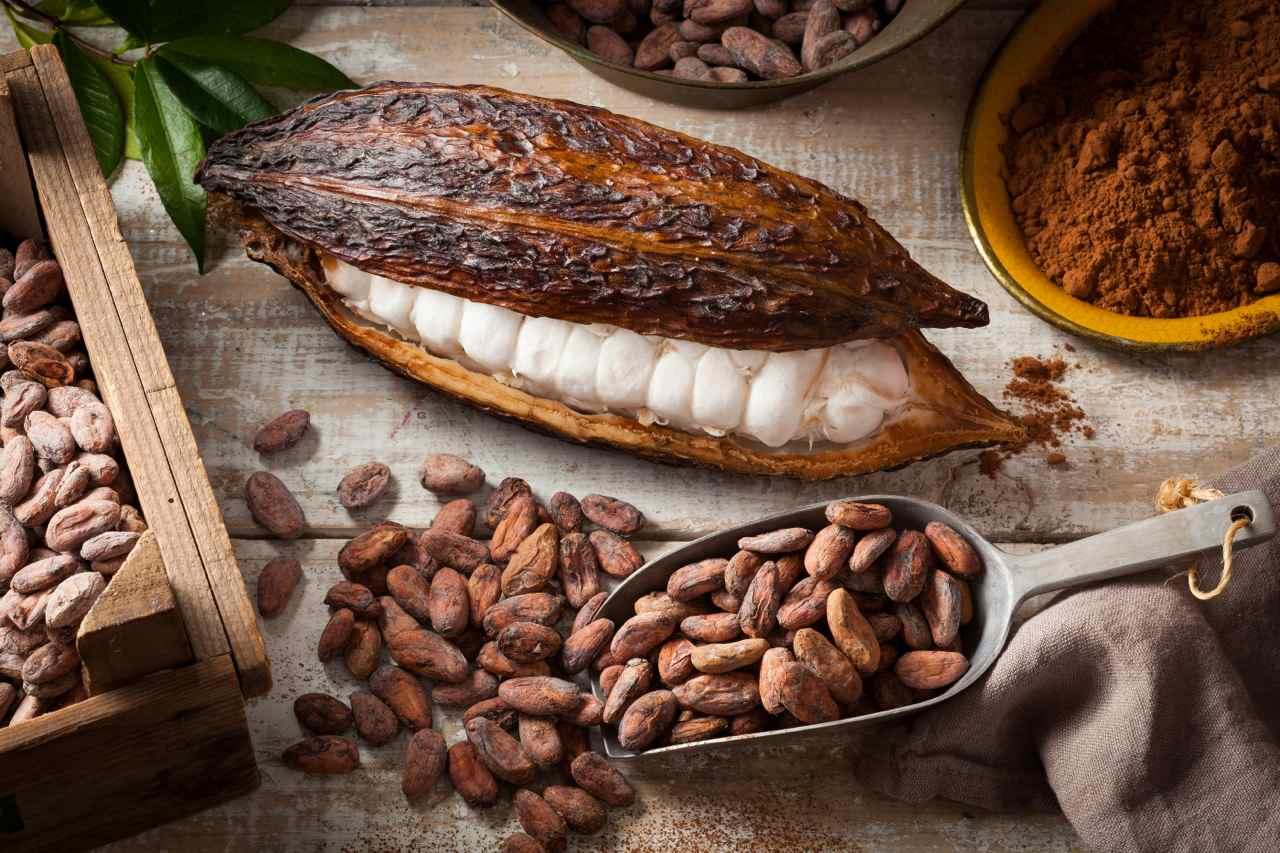 Cabosse Cacao - Cabosse cocoa - Gustorotondo - Italian food boutique