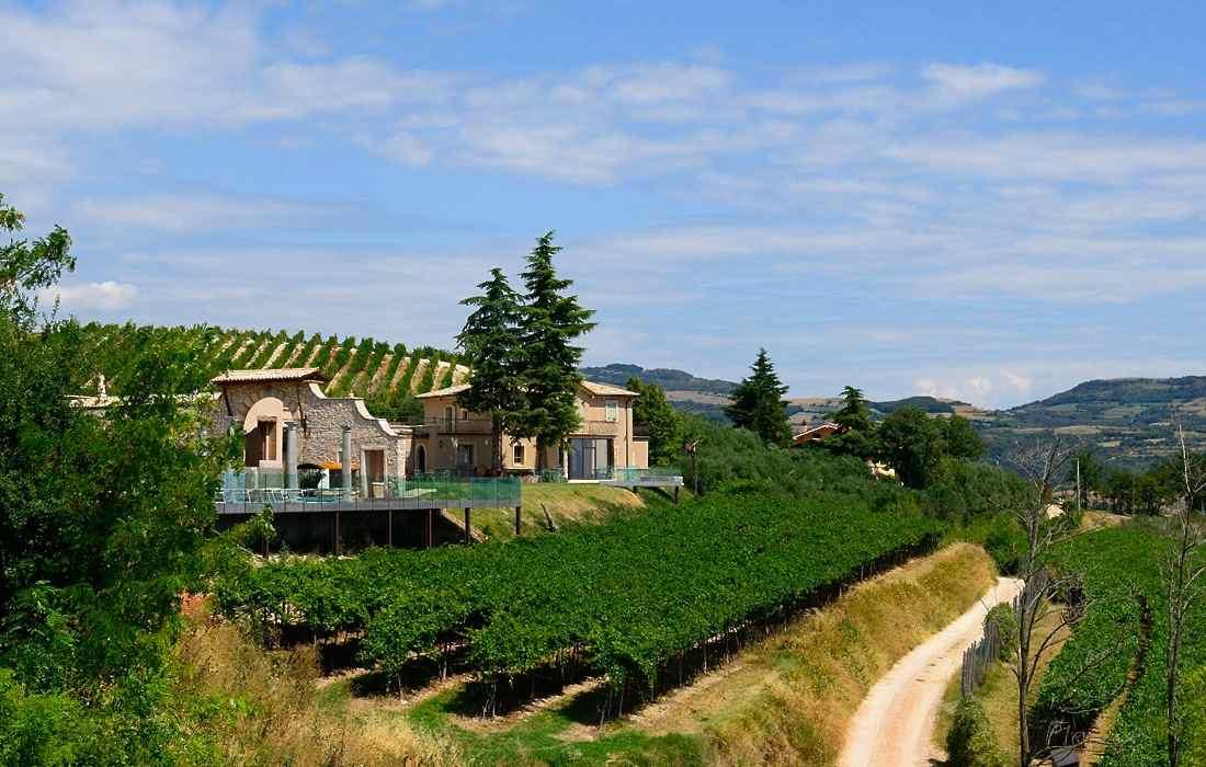 Tenuta le Cave - Le Cave Wine House - Gustorotondo - Italian food boutique