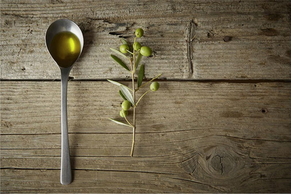 Olive oil olive branch - Olio oliva ramo ulivo - Gustorotondo - Italian food boutique