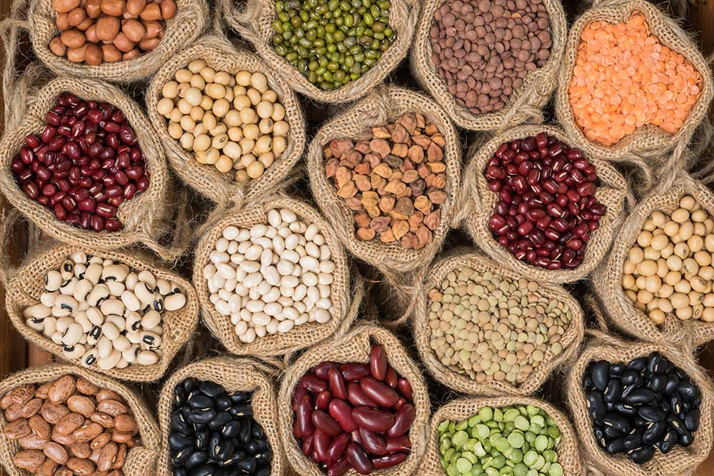 Legumes: a rich and intelligent food choice