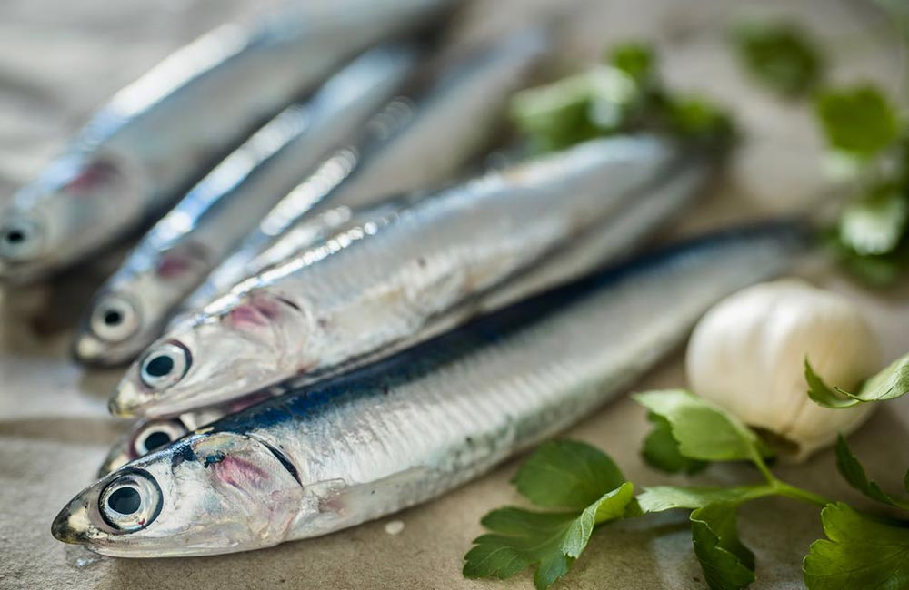 Ricetta Alici Marinate - Gustorotondo Italian food boutique - I migliori cibi online - Best Italian foods online - spesa online