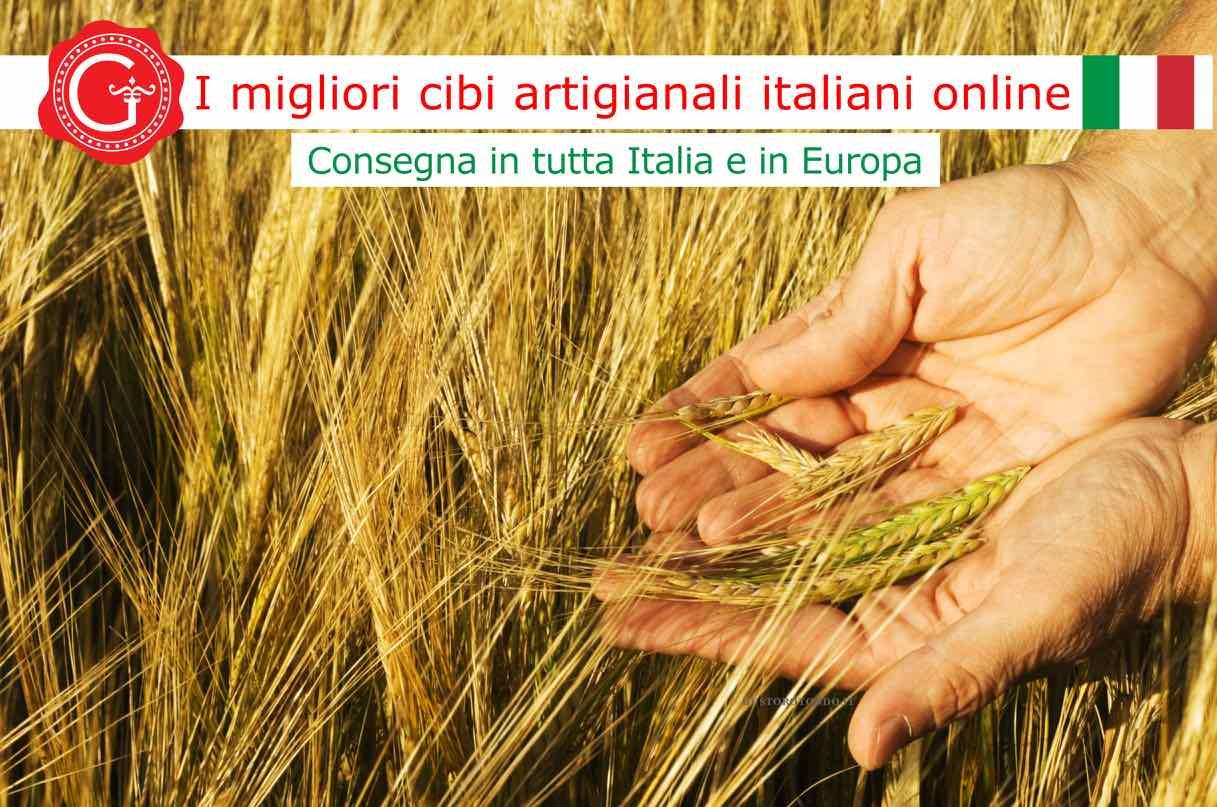 grano duro - Gustorotondo - Gustorotondo online shop - i migliori cibi online - vendita online dei migliori cibi italiani artigianali - best authentic Italian artisan food online