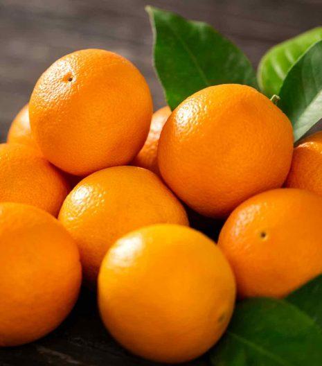 arance-confettura - Gustorotondo