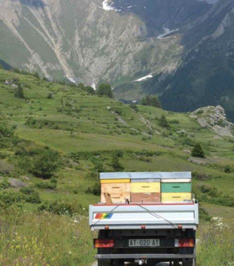 Apicoltura Vallera nomadismo api - Gustorotondo - buono sano artigiano - spesa online