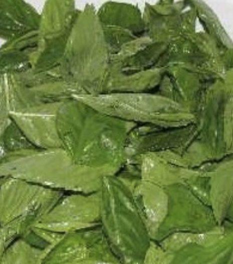 Prunotto Mariangela basilico per pesto bio - Gustorotondo - buono sano artigiano - spesa online