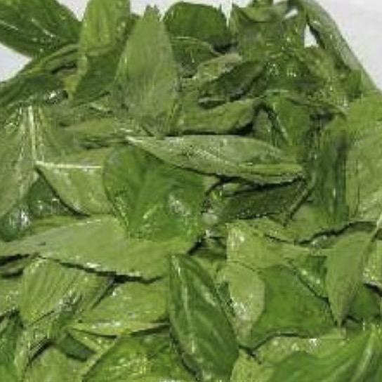 Prunotto Mariangela basilico per pesto bio – Gustorotondo – buono sano artigiano – spesa online