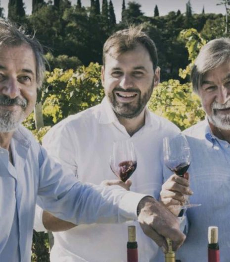 Fasoli Gino azienda vinicola - Gustorotondo - buono sano artigiano - spesa online